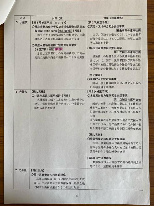 第3弾のコロナ対策〜臨時議会_b0199244_13580011.jpg