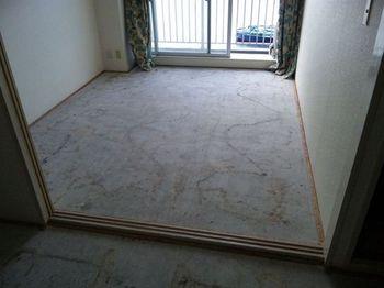 マンションのカーペットを剥がすと・・・_c0405550_16454694.jpg
