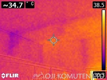 雨漏り点検とカビ_c0405550_16465094.jpg