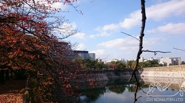 大阪城を望む新病院 大阪国際がんセンター見学会_c0405550_16465932.jpg