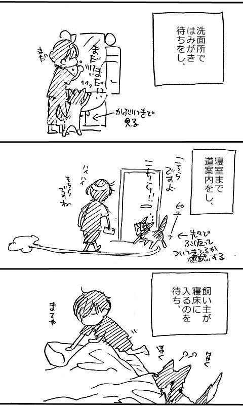 寝室の桐_a0342172_16495546.jpg