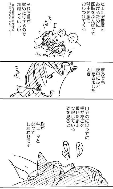 寝室の桐_a0342172_16520939.jpg