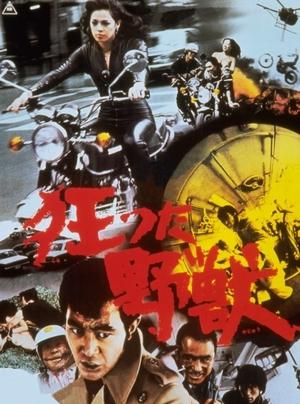 『狂った野獣』 中島貞夫 1976_d0151584_08555739.jpg