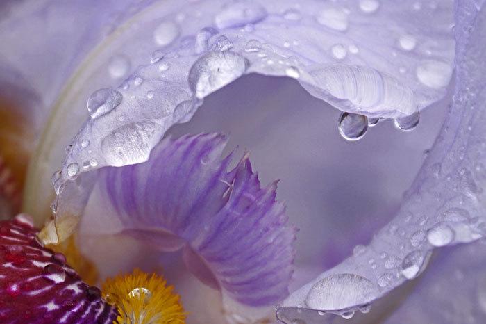 水滴_d0162994_05201837.jpg