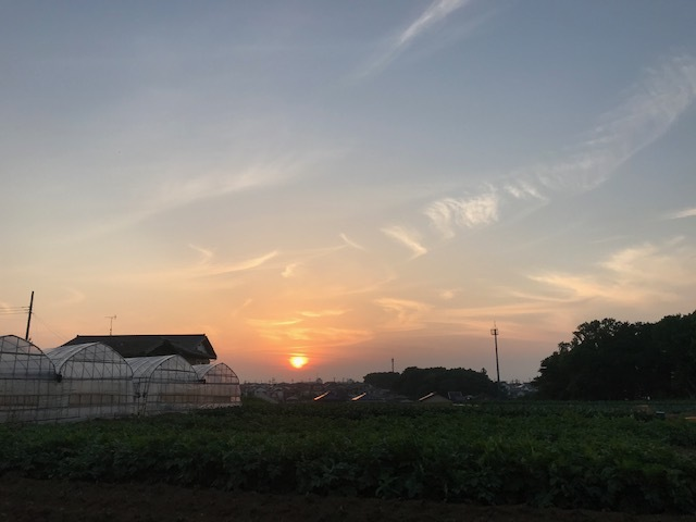 夕陽につられて。。_f0242002_22494778.jpg