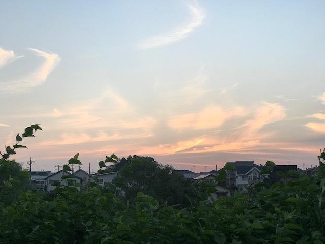 夕陽につられて。。_f0242002_23004815.jpg