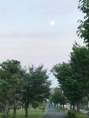 夕陽につられて。。_f0242002_23043832.jpg