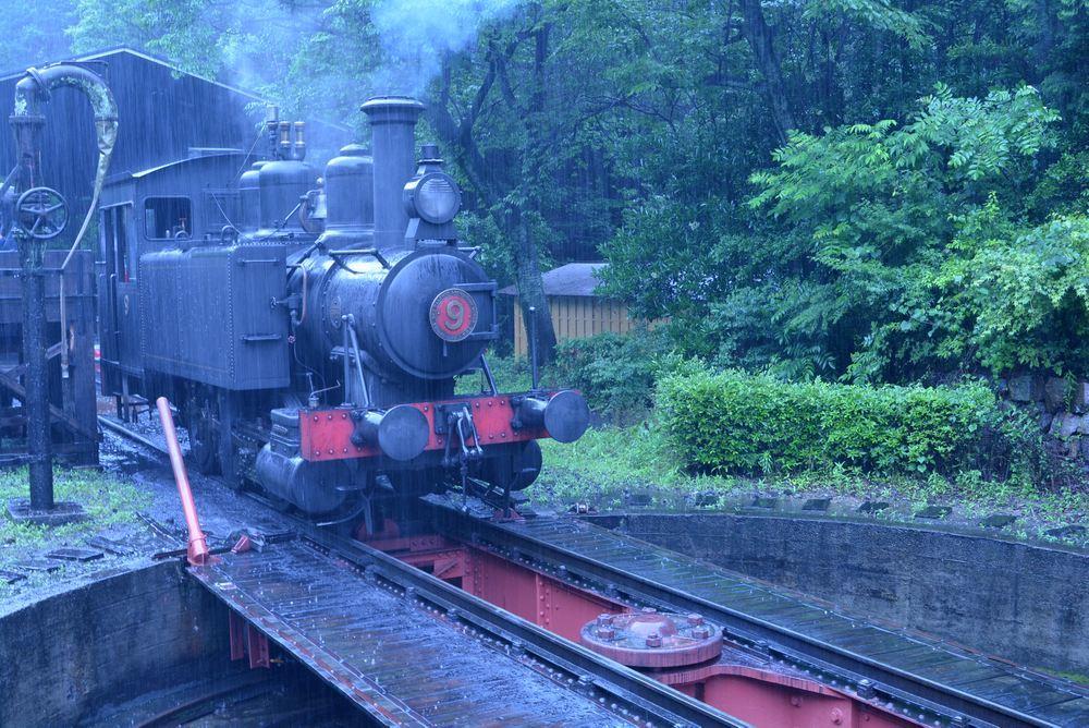 梅雨の9号機関車1_e0373930_19053216.jpg