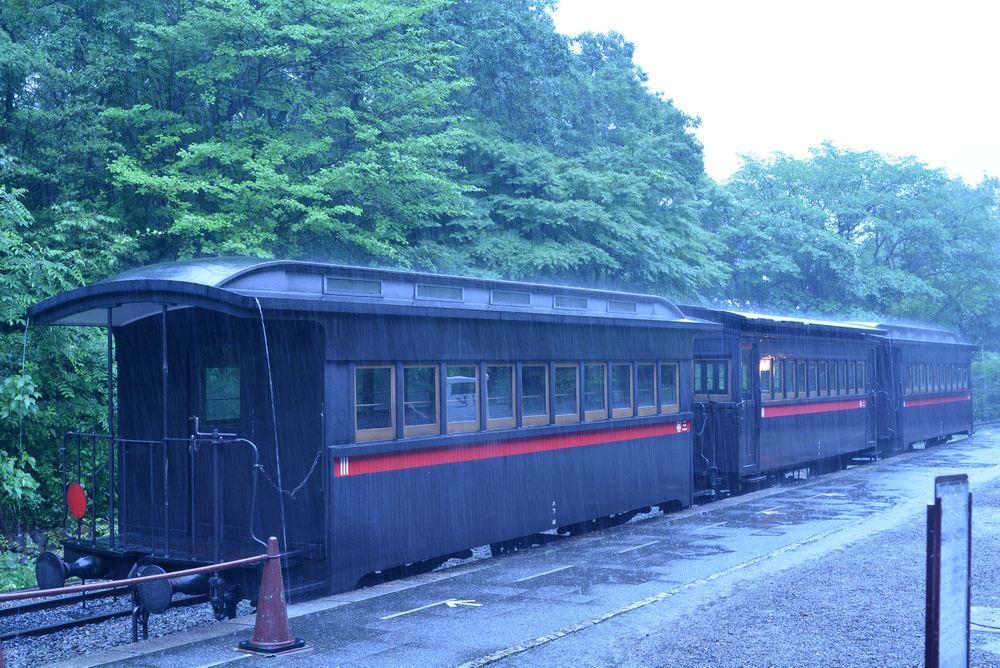 梅雨の9号機関車1_e0373930_19053358.jpg