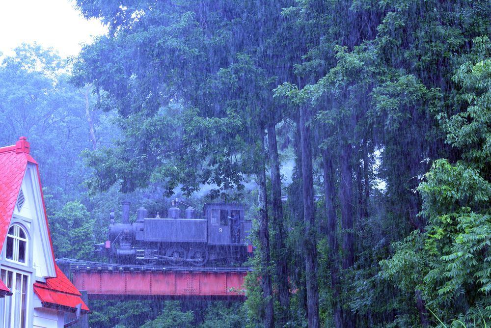 梅雨の9号機関車1_e0373930_19060235.jpg