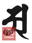 必須のストリング知識 ©プロストリンガー_a0201132_11101499.png
