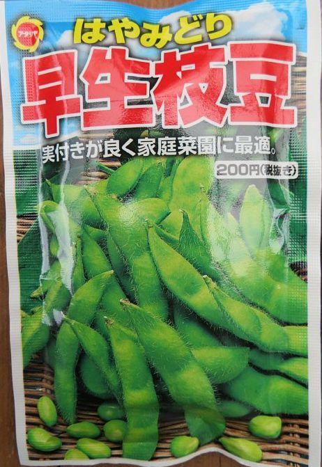 2020年6月23日 枝豆の種を蒔きました  !(^^)!_b0341140_18032052.jpg