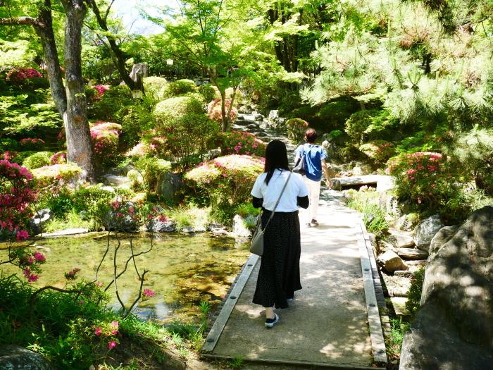 さつき咲く紅葉渓庭園  2020-06-17 00:00_b0093754_23103331.jpg