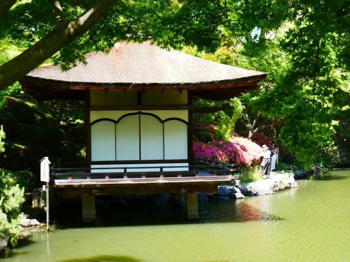さつき咲く紅葉渓庭園  2020-06-17 00:00_b0093754_23105743.jpg