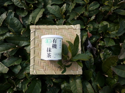 菊池水源茶 令和2年度の茶摘みの様子!こだわりの有機栽培のお茶の茶摘みを取材しました!_a0254656_16220741.jpg