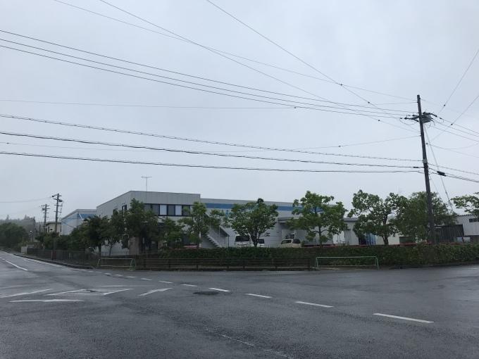 梅雨とアジサイ_b0100062_07250503.jpeg