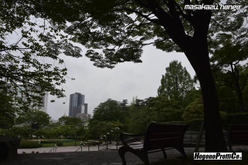 【おっ散歩カメラ放浪記:第9回】勾当台公園とGOLD100_b0008475_08433350.jpg