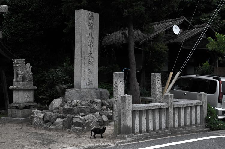 島の神社_e0123176_19541169.jpg