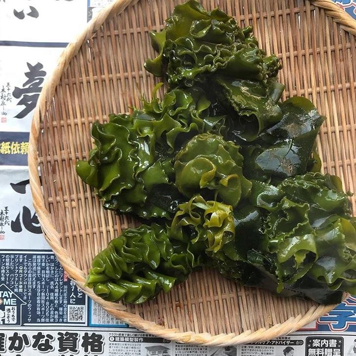 鎌倉天然わかめ_a0233202_17400932.jpeg