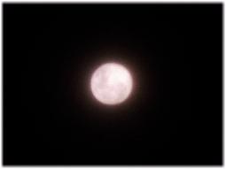 5日の満月はストロベリームーンだった_d0221430_13433902.jpg