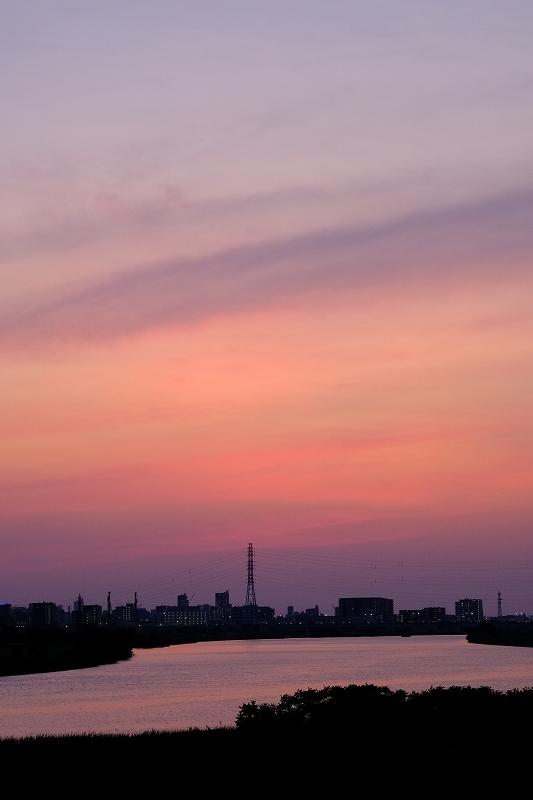 フォクササイズ  FUJIFILM X-T420200609荒川 Katachi_f0050534_16161010.jpg