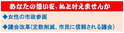 市議選挙_e0128391_6435048.jpg