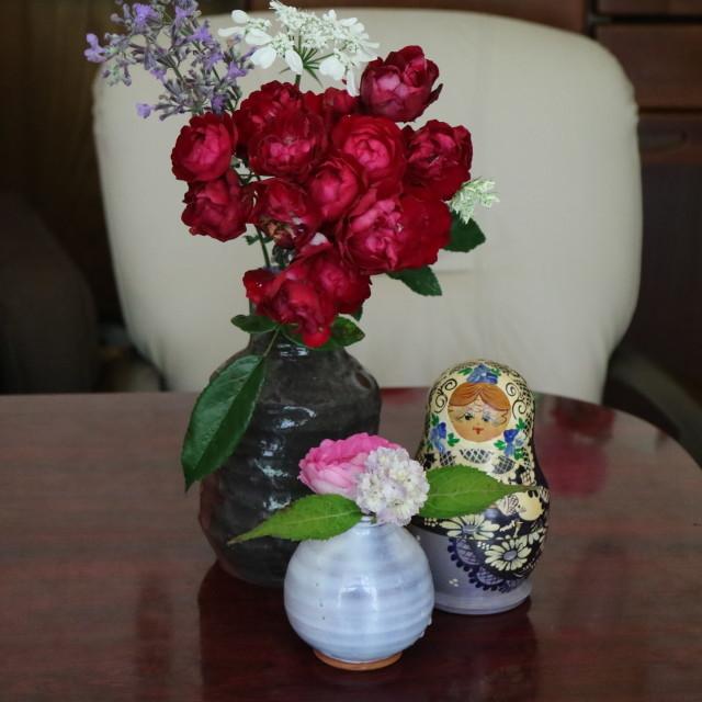 遅咲きのバラと宿根草~_e0397815_00450627.jpg