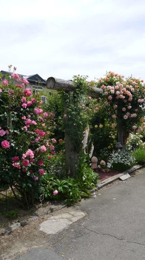 八幡平市の杉本ガーデン…素敵です_a0123133_13453850.jpg