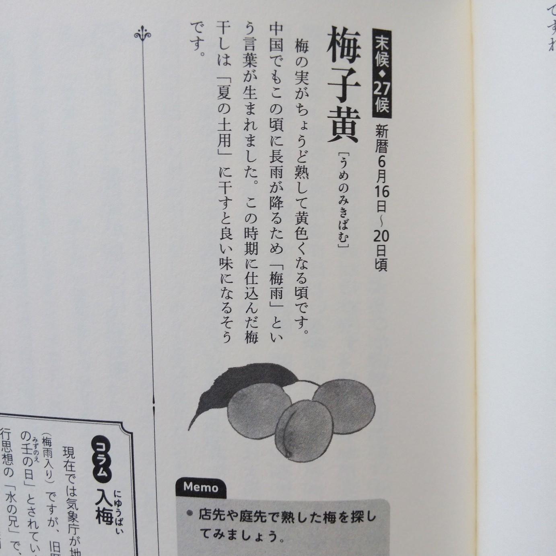 200615 七十二候「梅子黄」(うめのみきばむ)_f0164842_21491324.jpg