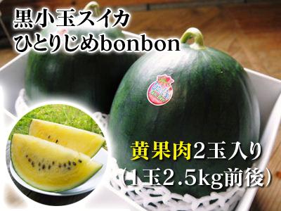 黒小玉スイカ「ひとりじめbonbon」黄色果肉は6月23日出荷分まで!赤果肉、メロンとのコンビも大人気!_a0254656_17371772.jpg
