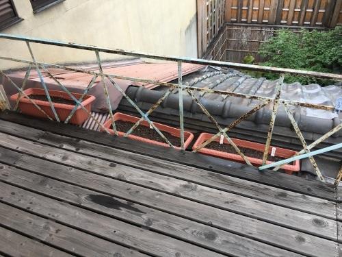 芒種の京の梅雨たより_b0153663_16315130.jpeg