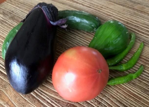トマト、ナス、青唐辛子初収穫6・14_c0014967_05525164.jpg