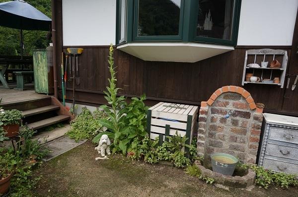 雨上がりの庭_e0365880_22181164.jpg