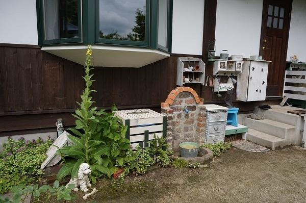 雨上がりの庭_e0365880_22182177.jpg