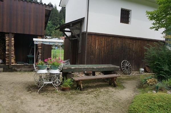 雨上がりの庭_e0365880_22185110.jpg