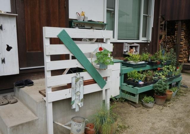 雨上がりの庭_e0365880_22185939.jpg