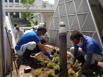 ガーデンふ頭総合案内所前花壇の植替えR2.6.15_d0338682_16375911.jpg
