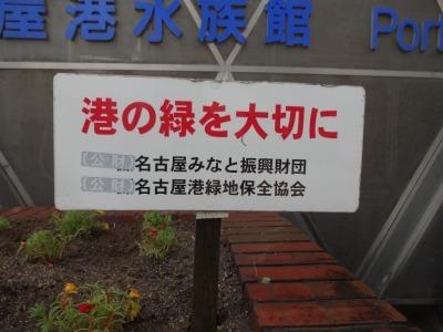 ガーデンふ頭総合案内所前花壇の植替えR2.6.15_d0338682_16411900.jpg