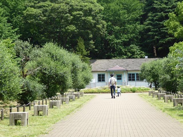 代々木公園でお弁当デビュー♪ 2か月の外出自粛だったので、すごくリラックスしたよ♪_b0287088_21282925.jpg