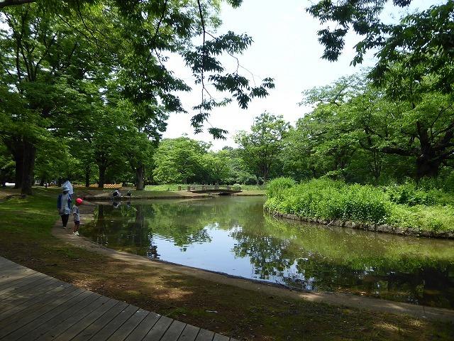 代々木公園でお弁当デビュー♪ 2か月の外出自粛だったので、すごくリラックスしたよ♪_b0287088_21301163.jpg