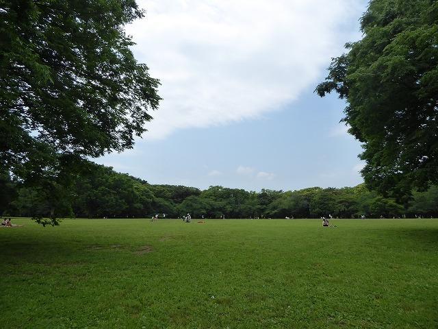 代々木公園でお弁当デビュー♪ 2か月の外出自粛だったので、すごくリラックスしたよ♪_b0287088_21333795.jpg