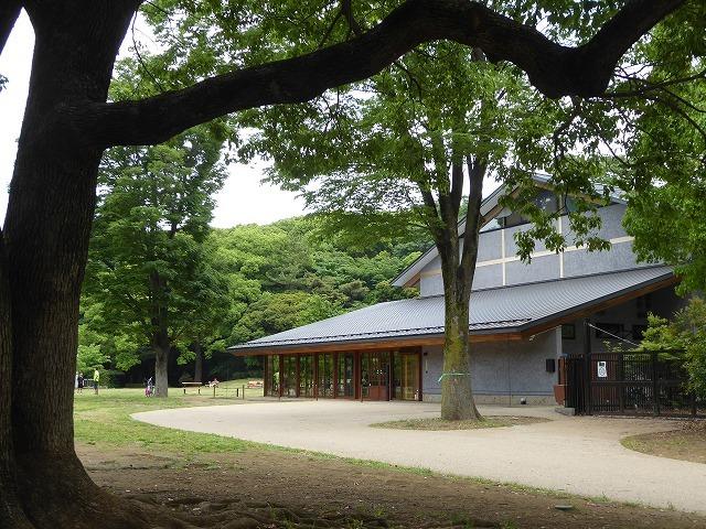 代々木公園でお弁当デビュー♪ 2か月の外出自粛だったので、すごくリラックスしたよ♪_b0287088_21354552.jpg