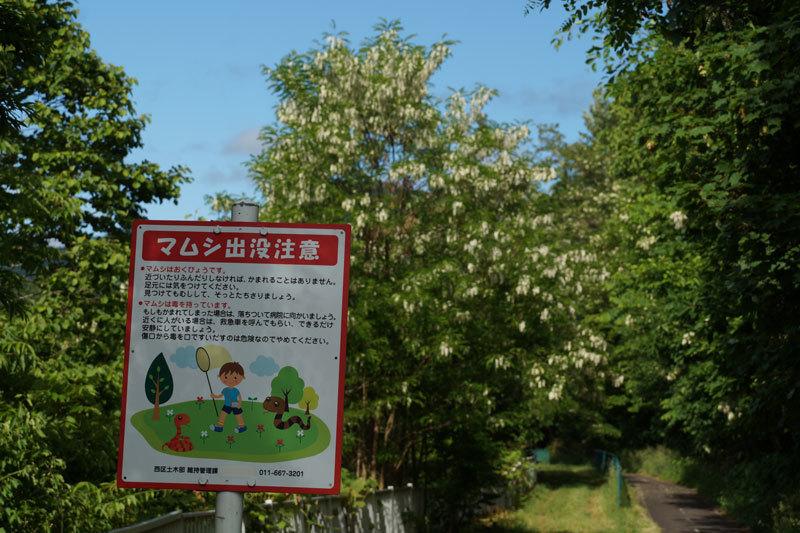 青空_d0162994_10005088.jpg