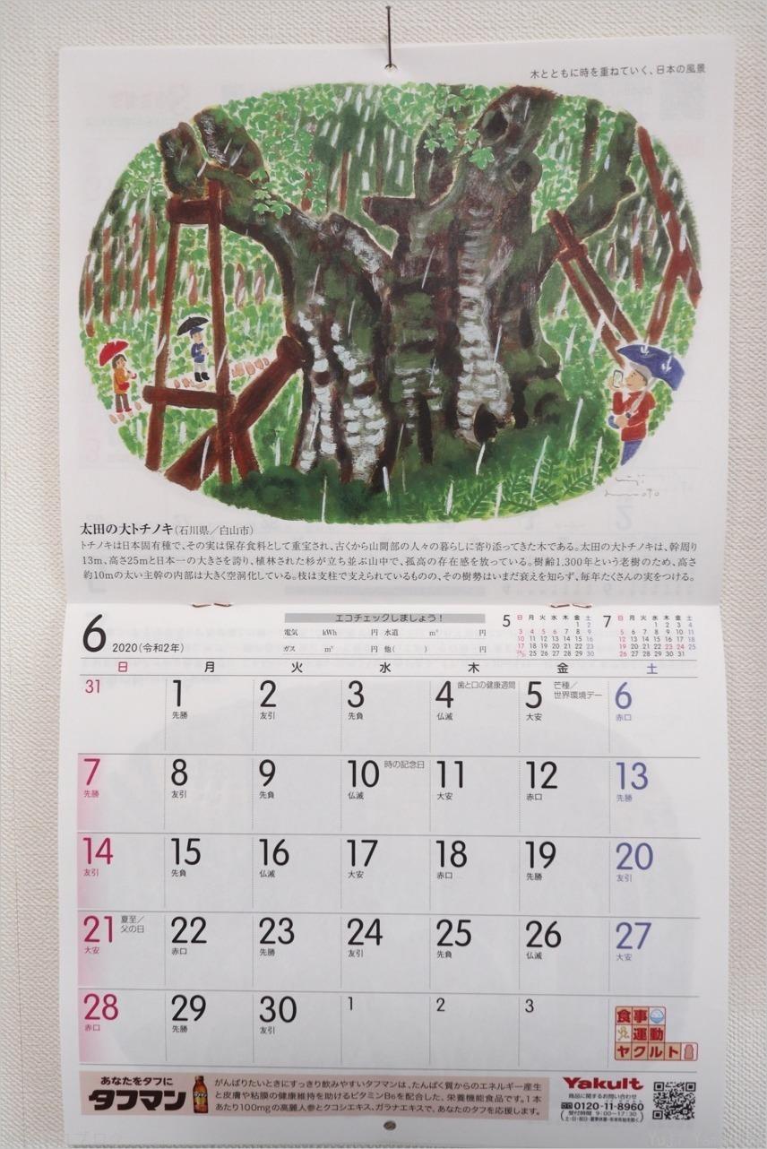 ヤクルトカレンダー2020年6月_c0202706_18513364.jpg