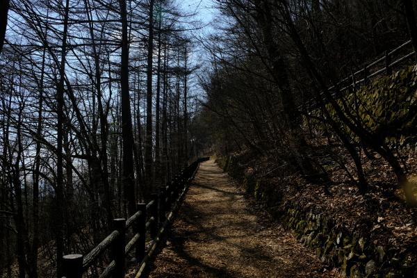 低山登山を楽しむ_e0000910_11380322.jpg