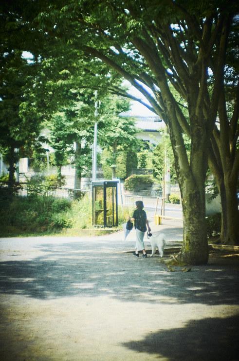 朝の散歩(3cut)_e0342136_16563992.jpg