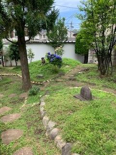 雑草のある庭_b0367284_14325659.jpg