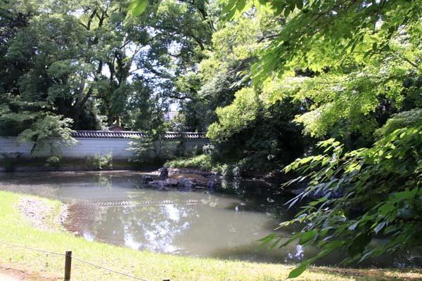 閑院宮邸跡 濃い緑に_e0048413_21240721.jpg
