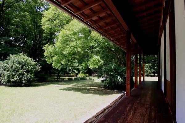 閑院宮邸跡 濃い緑に_e0048413_21241863.jpg