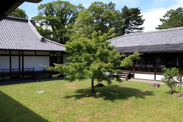 閑院宮邸跡 濃い緑に_e0048413_21250775.jpg